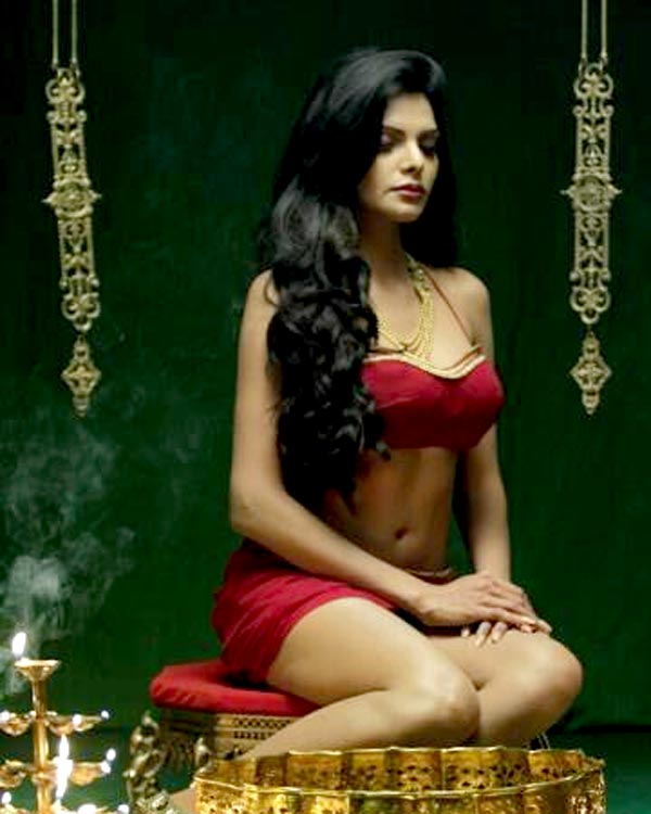 Think, Sherlyn chopra naked body have hit